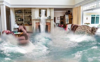 Fire and Flood: Are YOU Safe?