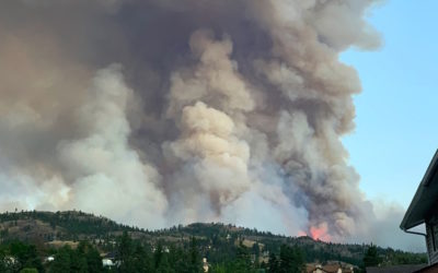 Wildfire Preparedness Plan for Your Household During COVID 19