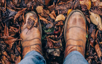 It's Fall Alright! Managing Leaves for Safe Sidewalks