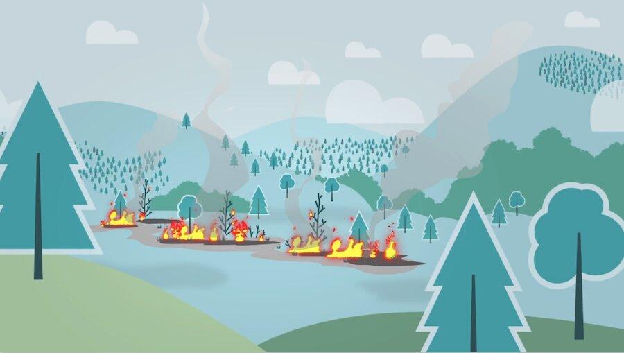 BC Wildfire Preparedness 2021