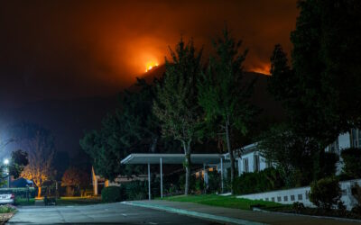 Landscaping for Wildfire Prevention